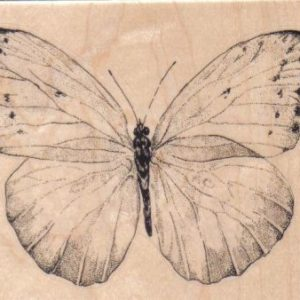 Butterfly Gossamer/Large 4 1/4 X 3 1/2-0