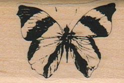 Butterfly Striped/Sm 1 3/4 x 1 1/4-0