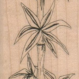 Bamboo Stalk 2 1/4 x 5 1/4-0