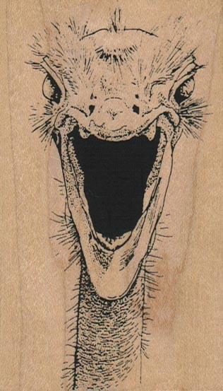 Screaming Ostrich Head 2 1/4 x 3 3/4-0
