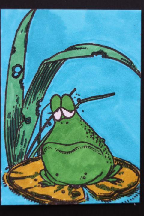 Fat Frog 2 x 2-41838