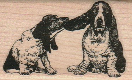 Ear Pull Basset Hounds 2 x 3 1/4-0