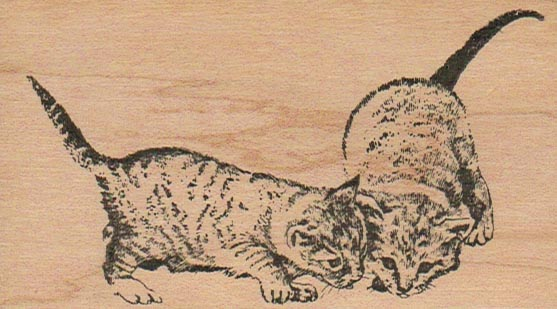 Cats Searching 2 1/4 x 3 3/4-0