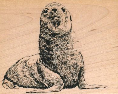 Approving Seal 3 1/2 x 4 1/4-0