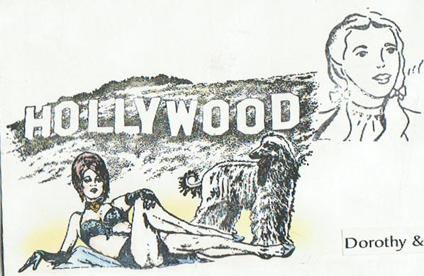 Hollywood 3 1/2 x 6 3/4-35100