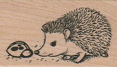 Hedgehog Curious 1 3/4 x 2 3/4-0