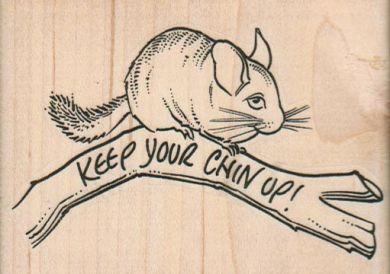Chinchilla Keep Your Chin Up! 3 1/2 x 2 1/2-0