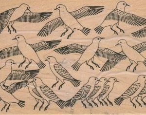 Bird Background 4 x 6-0