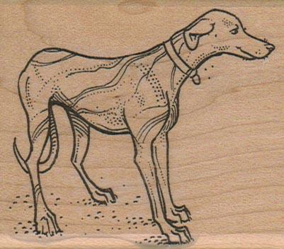 Dog With Collar 2 1/2 x 2 3/4-0