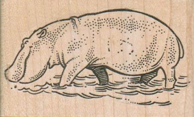 Hippo Wading 3 x 1 3/4-0