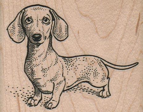 Wiener Dog 3 1/4 x 2 1/2-0