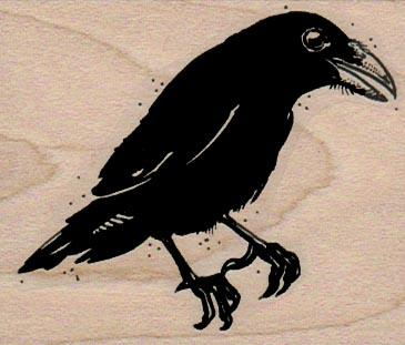 Raven 2 1/4 x 2 1/2-0
