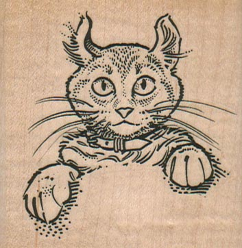 Cat With Collar 2 1/2 x 2 1/2-0