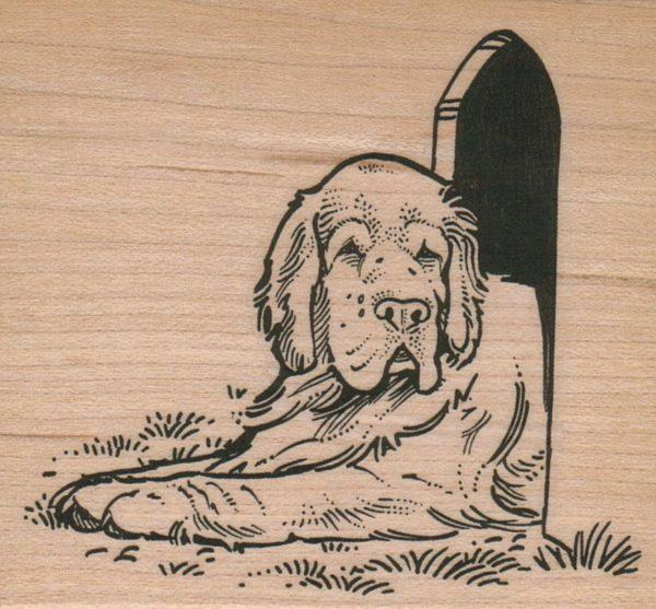 Dog/House 3 x 3-0