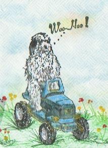 Dog Tractor 1 3/4 x 2 1/2-35092