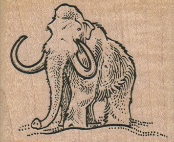 Wooly Mammoth 2 1/2 x 2-0