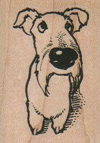Dog Looking Up 1 1/2 x 2-0