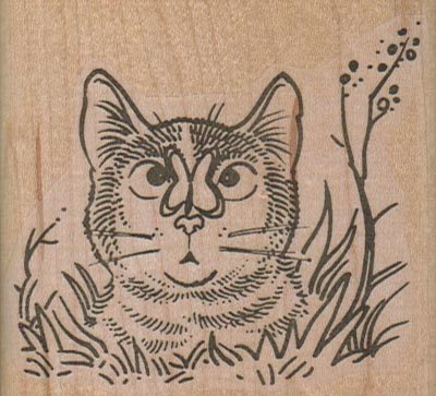 Cat With Butterfly On Nose 2 3/4 x 2 1/2-0