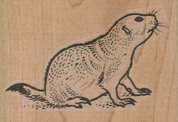 Prairie Dog Sitting 2 1/2 x 1 3/4-0
