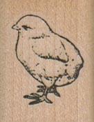 Chick Standing 1 x 1 1/4-0
