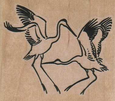 Sparring Cranes 2 3/4 x 2 1/4-0