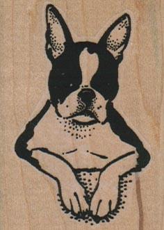 Boston Terrier Crossed Paws 1 3/4 x 2 1/4-0