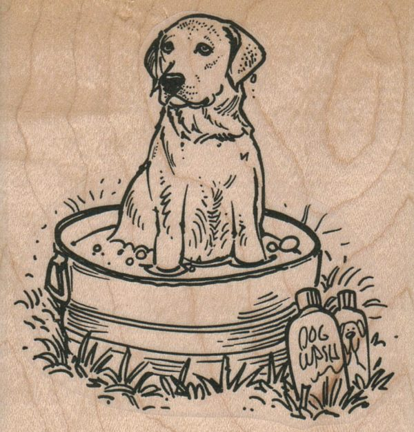 Labrador Retriever Dog Bath 3 x 3-0