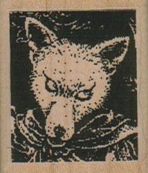 Wolf Fox Square 1 1/2 x 1 3/4-0
