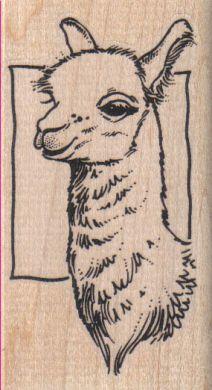 Llama Square 2 x 3 1/2-0