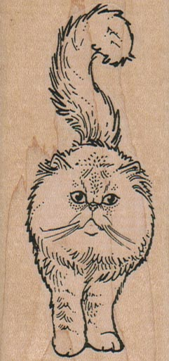 Fluffy Cat Front 1 3/4 x 3 1/2-0