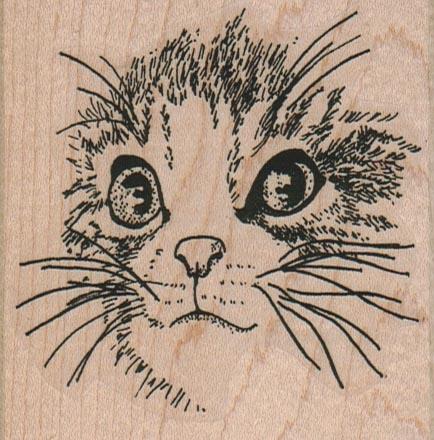 Cat Face/Large 3 x 3-0