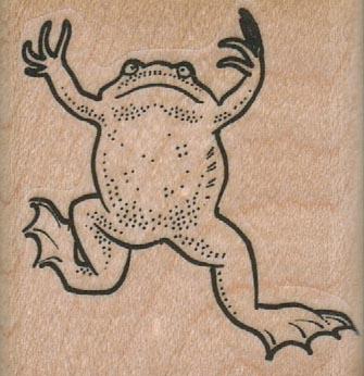 Swimming Frog 1 3/4 x 1 3/4-0