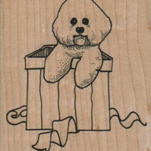 Bichon In Gift Box 3 x 3 1/4-0