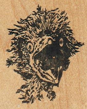 Birdhead 2 x 2 1/2-0