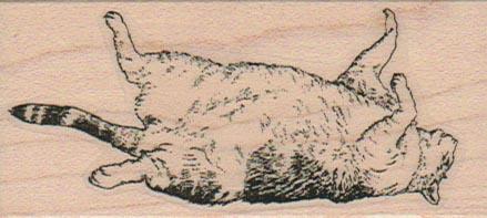 Sleeping Cat 1 1/2 x 3-0