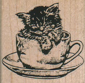 Kitty In Cup 2 x 2-0