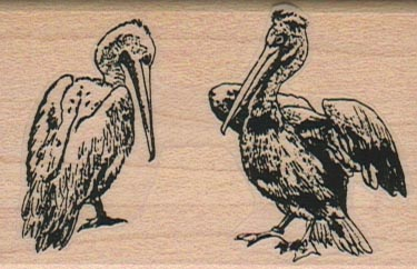 Two Pelicans 1 3/4 x 2 1/2-0