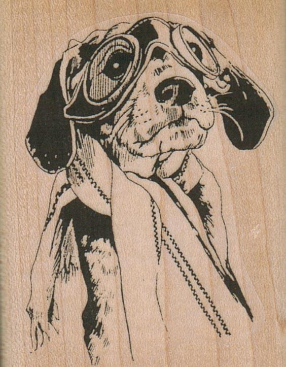 Aviator Beagle Dog 2 x 2 1/2-0