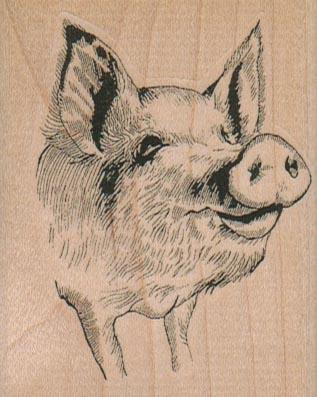 PigFace 2 1/4 x 2 3/4-0