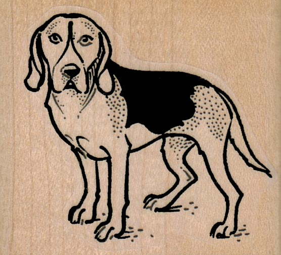 Sad Fox Hound Dog 2 x 1 3/4-0