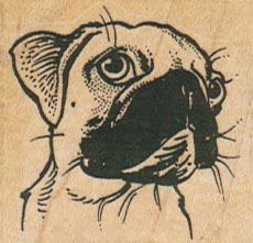 Pug Dog Face 1 3/4 x 1 1/2-0