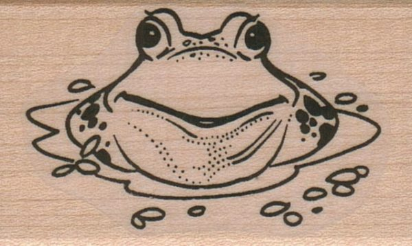 Frog In Water 1 1/2 x 2 1/4-0