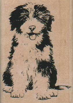 Old English SheepDog/Large 1 3/4 x 2 1/2-0