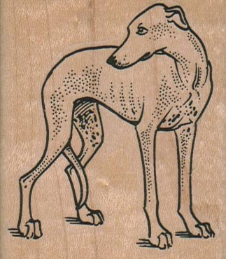 Whippet Looking Back 2 1/4 x 2 1/2-0