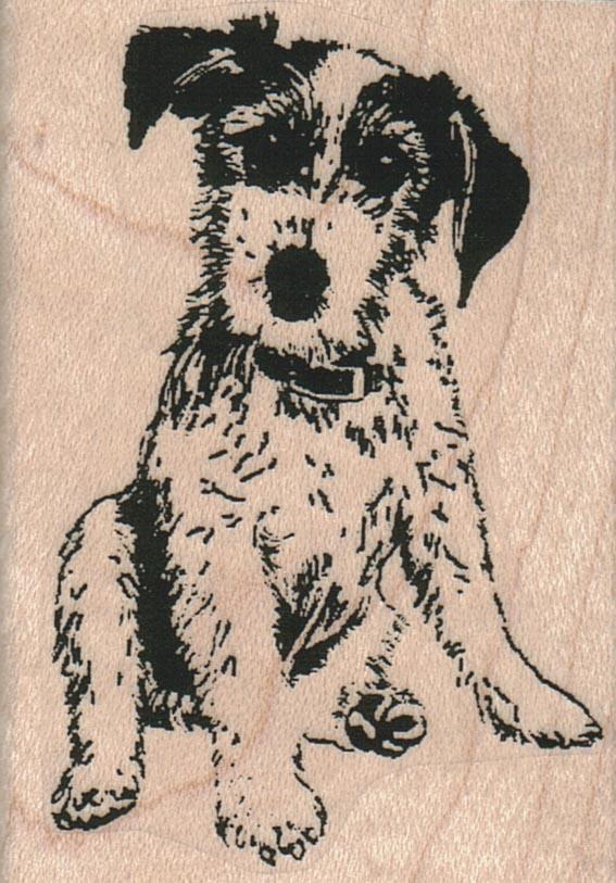 Dog Sitting 2 x 2 3/4-0