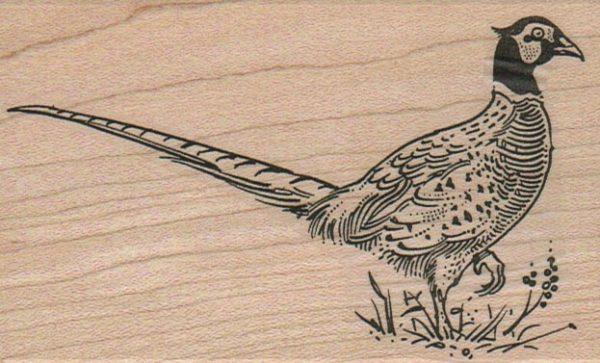Pheasant 2 3/4 x 4 1/4-0
