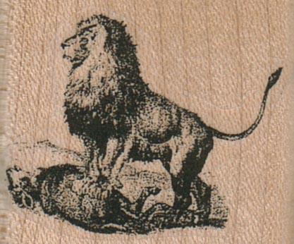 Lion 1 1/2 x 1 1/4-0