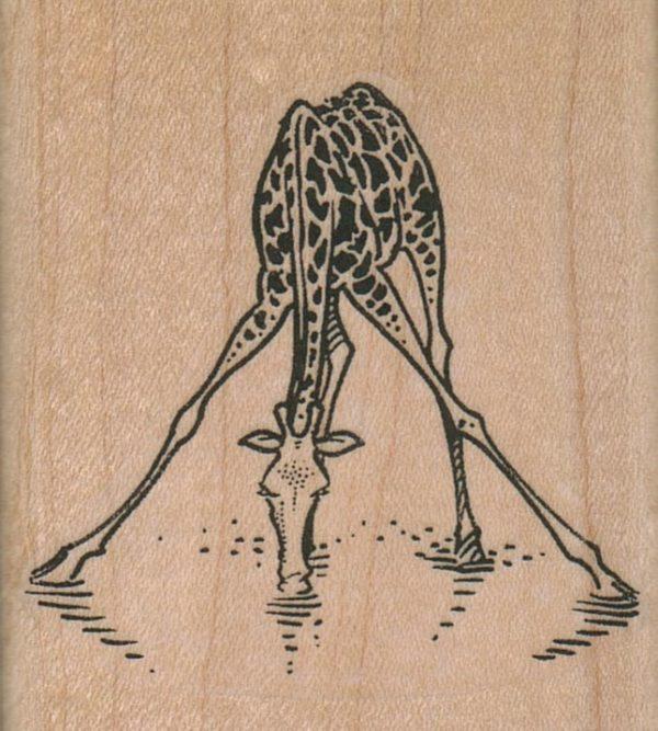 Giraffe Drinking/Legs Apart 2 1/4 x 2 1/4-0