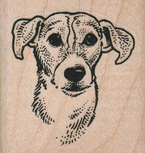 Floppy Eared Dog 1 3/4 X 1 3/4-0