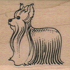Yorkie Dog 1 3/4 x 1 3/4-0